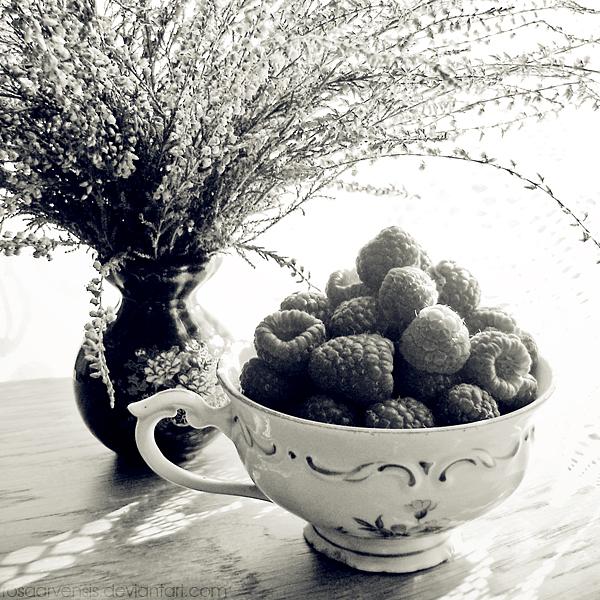 Raspberry afternoon by rosaarvensis