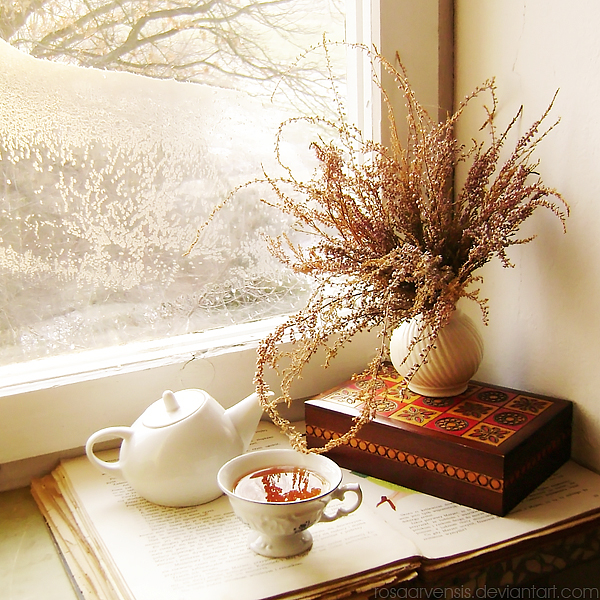 Windowsill II by rosaarvensis