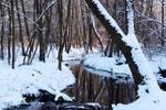Remembering winter V