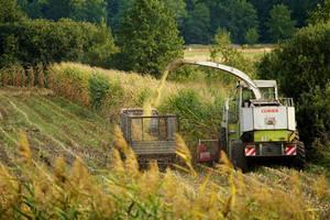 Forage harvesting