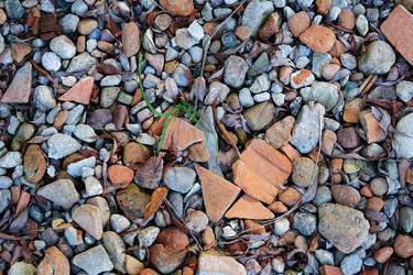 Stones and leaves and bricks