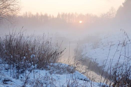 Foggy winter evening III