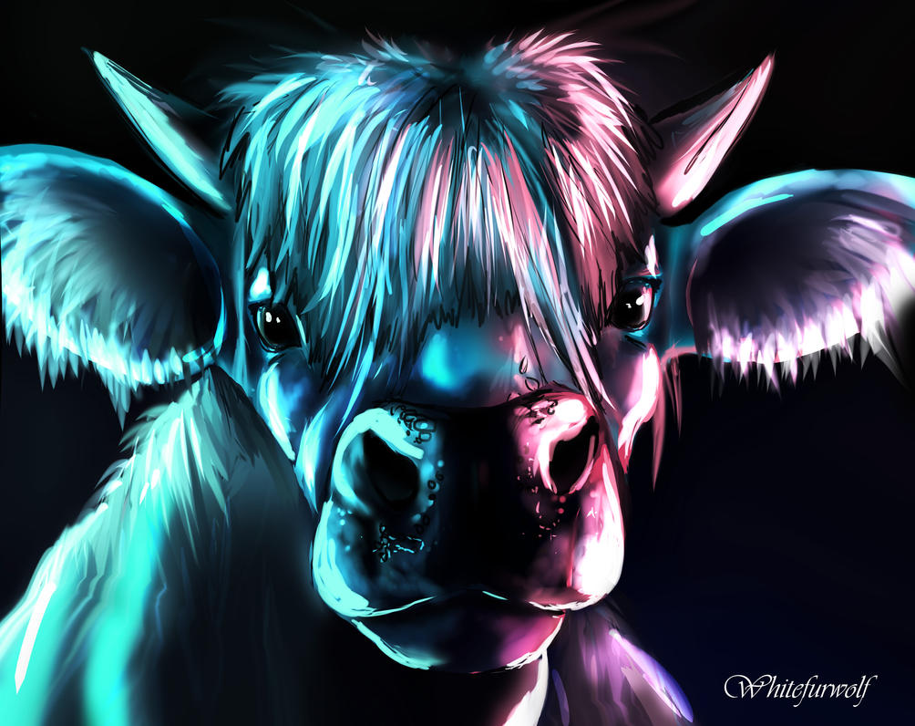 The cow over the moon by Whitefurwolf