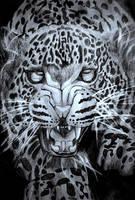 Leopard - The Predator of the Night by BrofesserDRAWSstuff