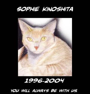 Goodbye Sophie