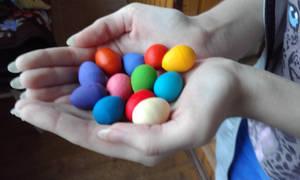 Multi-colored pigeon eggs! (2)