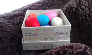 Multi-colored pigeon eggs! (4)