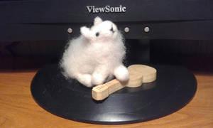 Lamb from coarse wool