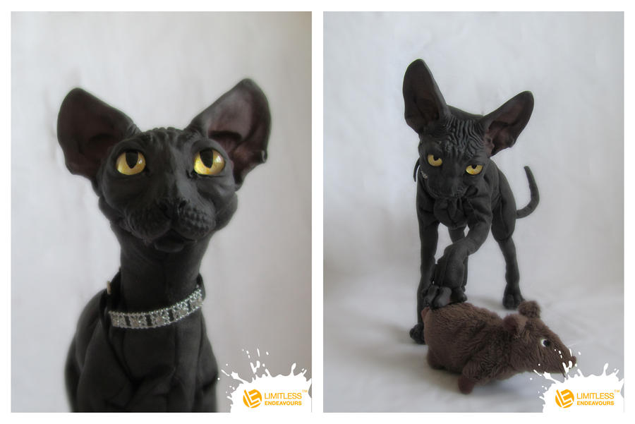 Sphynx Cat #1 of limited edition by LimitlessEndeavours