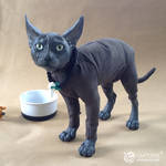 Black Sphynx Cat Doll
