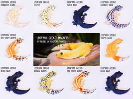 Leopard Gecko Magnets by LimitlessEndeavours