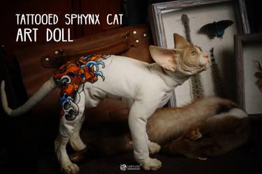 #2 Tattooed Sphynx
