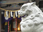 Shisa from the Shrine
