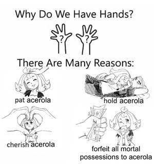 why do we have hands?