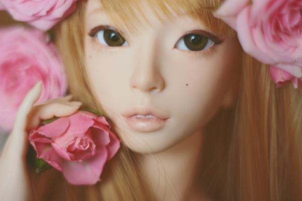 roses by da-bu-di-bu-da