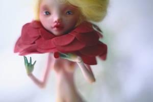 red flower ii by da-bu-di-bu-da