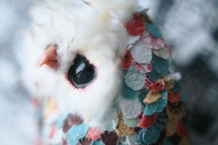oh owl by da-bu-di-bu-da