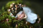 mushroom princess ii