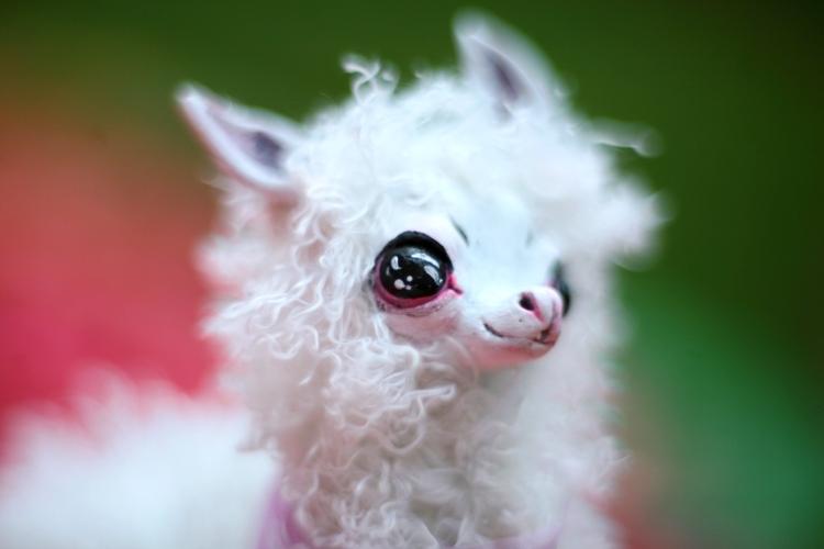 llama's face by da-bu-di-bu-da