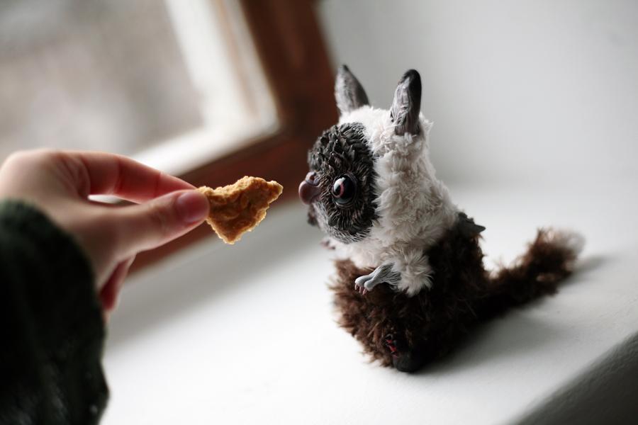 pygmy owl griffin by da-bu-di-bu-da