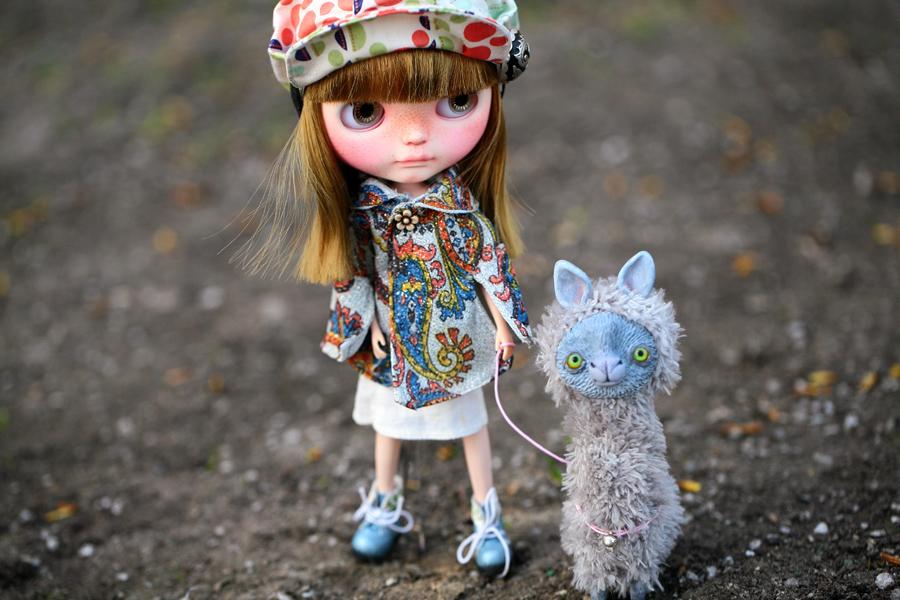 take your llama for a walk by da-bu-di-bu-da