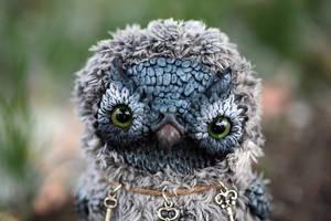 grey owl by da-bu-di-bu-da