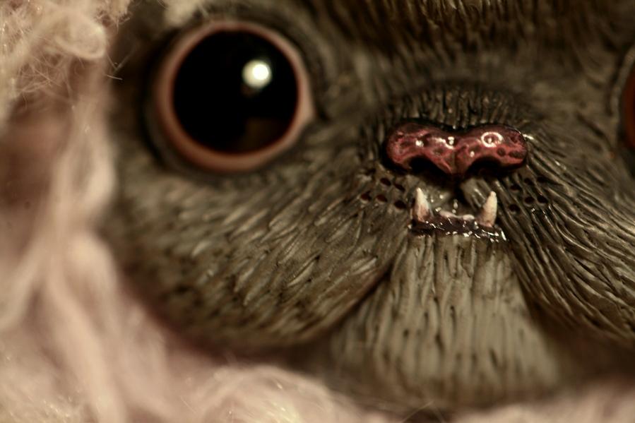selkirk rex monster cat by da-bu-di-bu-da