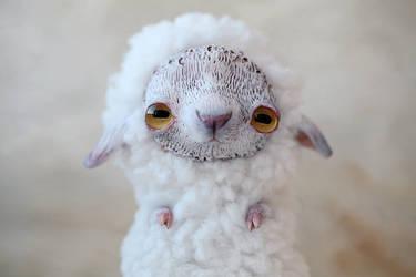 little sheep by da-bu-di-bu-da