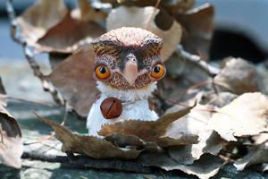 red eyed owl by da-bu-di-bu-da
