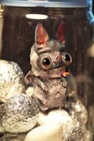 bat bunny by da-bu-di-bu-da