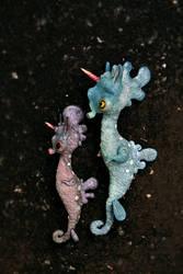 sea horse unicorns