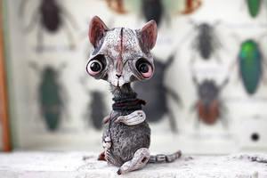 hey kitty kitty kitty by da-bu-di-bu-da