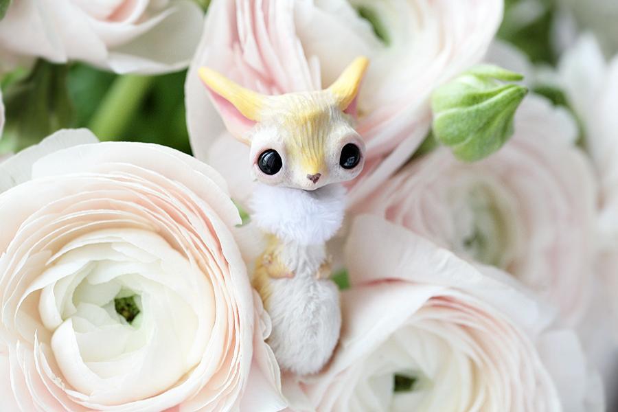hey baby fox by da-bu-di-bu-da