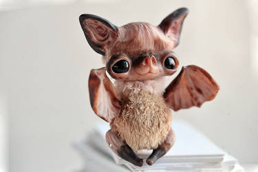 little bat by da-bu-di-bu-da