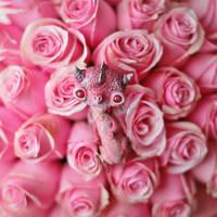 i want to be a rose, too by da-bu-di-bu-da