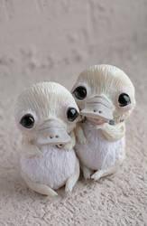 platypus friends