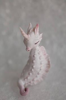 albino seahorse