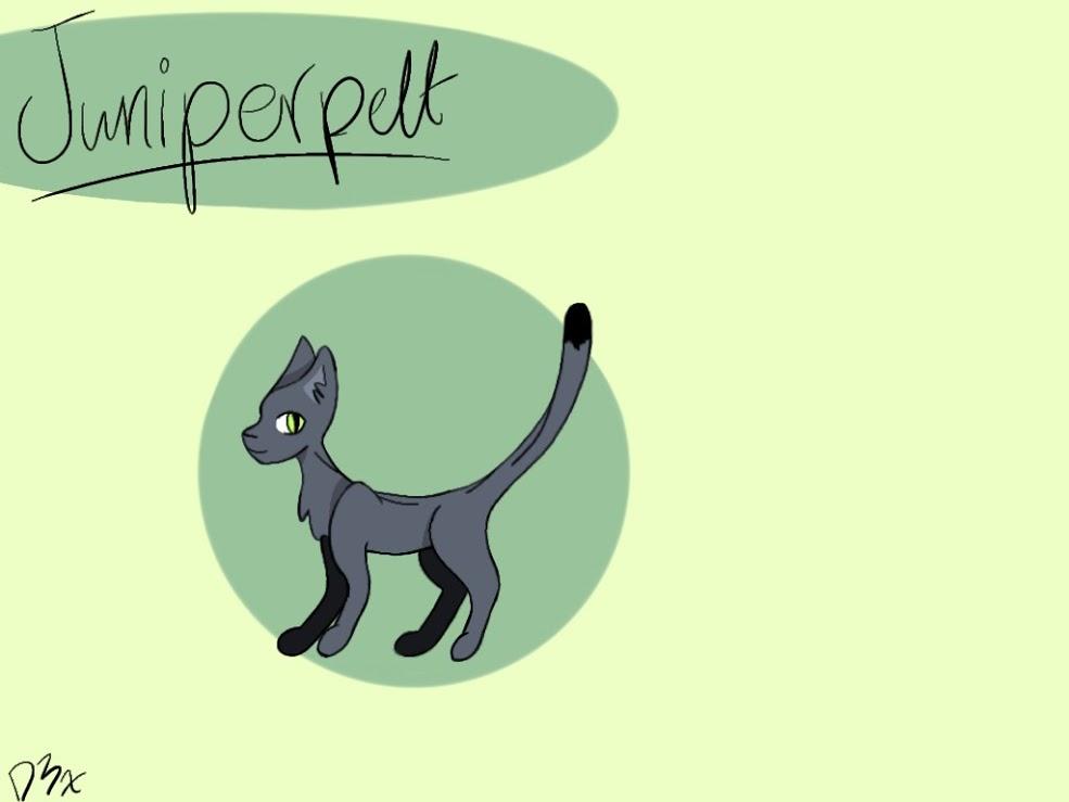 Juniperpelt by D3xT3er
