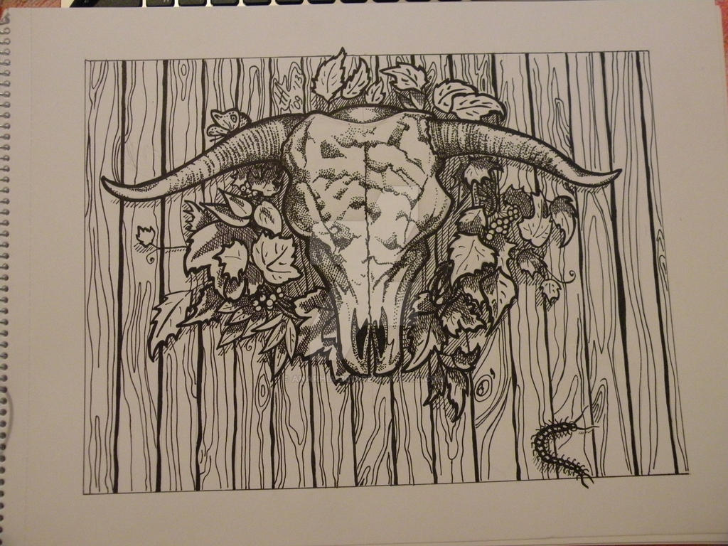 bull skull by anarhia 2013 on deviantart