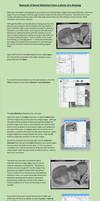 Barrel Distortion Correction Tutorial