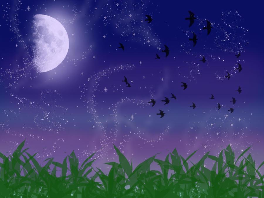 Night Birds by ryoko285