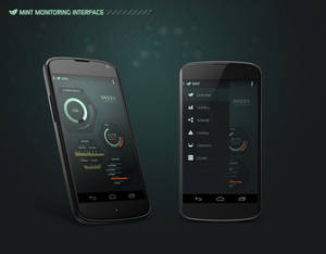 MINT Monitoring Interface - Mobile Version