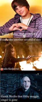Bellatrix Lestrange Kills Justin Bieber by slytherinx