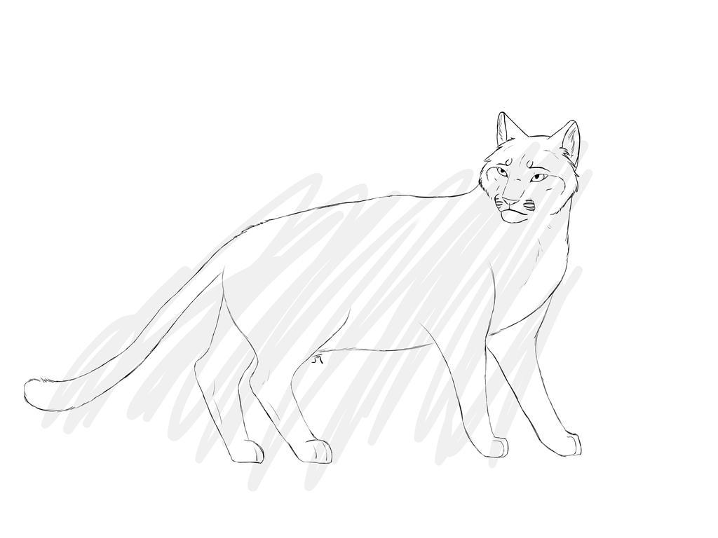 P2U Cat lineart by Nitty-Kitty