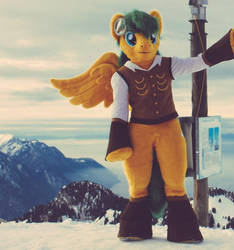 Nice view in Swiss summit by BronyCars