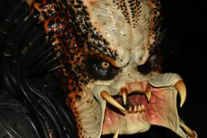 Predator by RazgrizRx