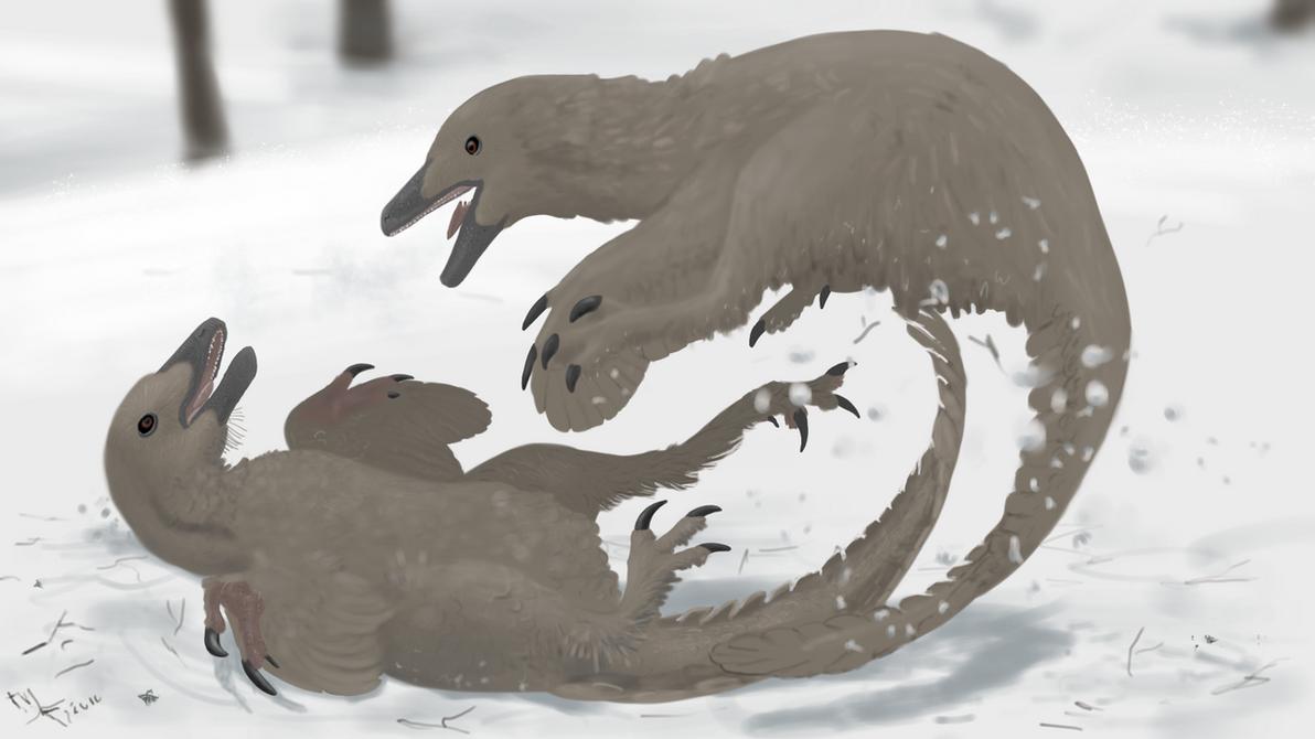 Wikipedia Troodon by Midiaou
