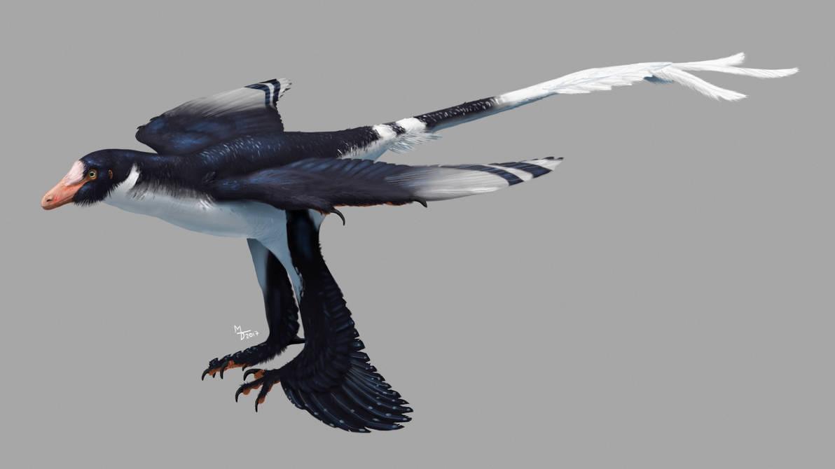 Zhongjianosaurus by Midiaou