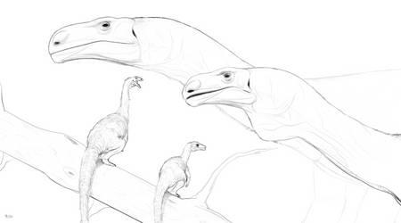 Sauropodomorphs