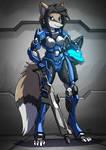 Armour 5